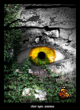eyemanipfinal