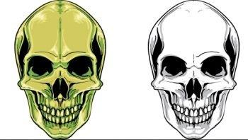 Skull_sample