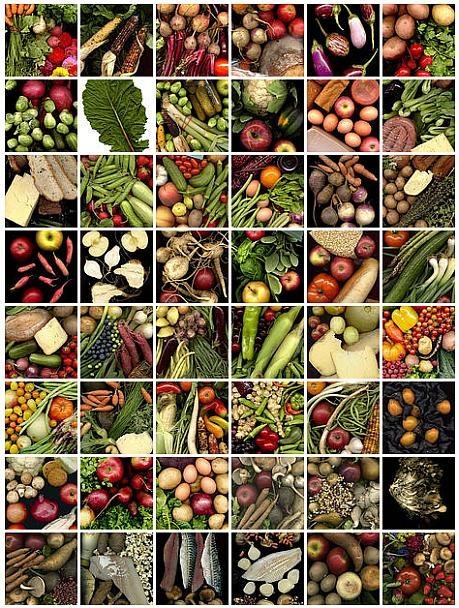 greenmarket_fotos