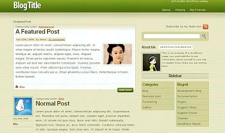superfresh_wordpresstheme
