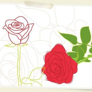 ValentinesRoses